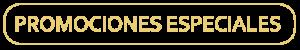 banner_promociones_especiales
